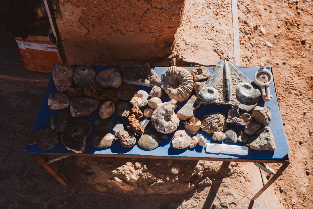 Koupit tu můžete třeba zkameněliny